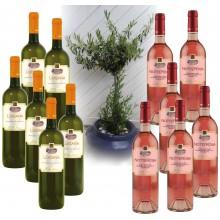 Weinpaket WeissRosé SD_R750.08, 12 Flaschen