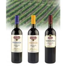 das Weingeschenk SD_R750.761, 3 Flaschen
